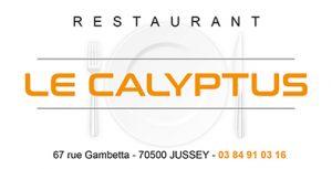 LE_CALYPTUS_-_encart_MEB_138x70_mm_-_BD